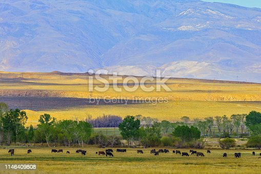 Owens valley and the Sierra Nevada countryside in the state of California