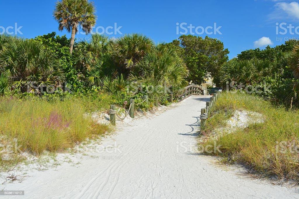 Siesta Beach, Sarasota, Flórida - foto de acervo