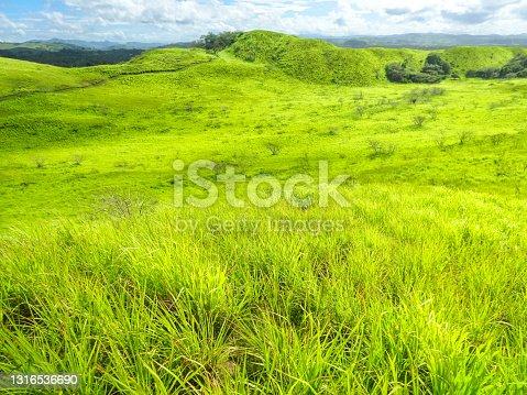 istock Sigatoka Sand Dunes National Park Viti Levu Fiji 1316536690