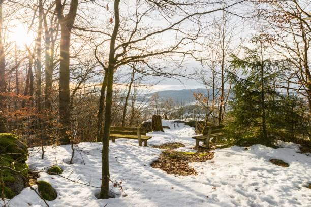 sightseeing plattform aussichtsstein-frauenberg nära grafenau i den bayerska skogen, tyskland - bayerischer wald bildbanksfoton och bilder