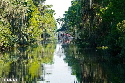Jean Lafitte National Park, Louisiana/USA - June 13, 2019: Airboat filled with sightseers navigates cypress swamps of vast Mississippi River Delta region near New Orleans.