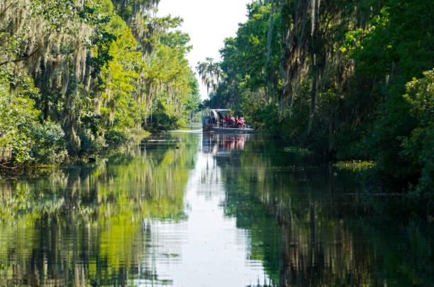 Sightseers Aboard Airboat in Louisiana Bayou stock photo