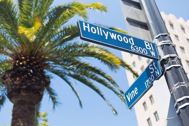 Sign at the Corner of Hollywood and Vine Street signs at the corner of Hollywood Boulevard and Vine Street hollywood boulevard stock pictures, royalty-free photos & images