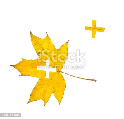 Autumn signs. Sign + carved from a beautiful yellow maple leaf on a white background. On the sheet, the stencil outline of the sign