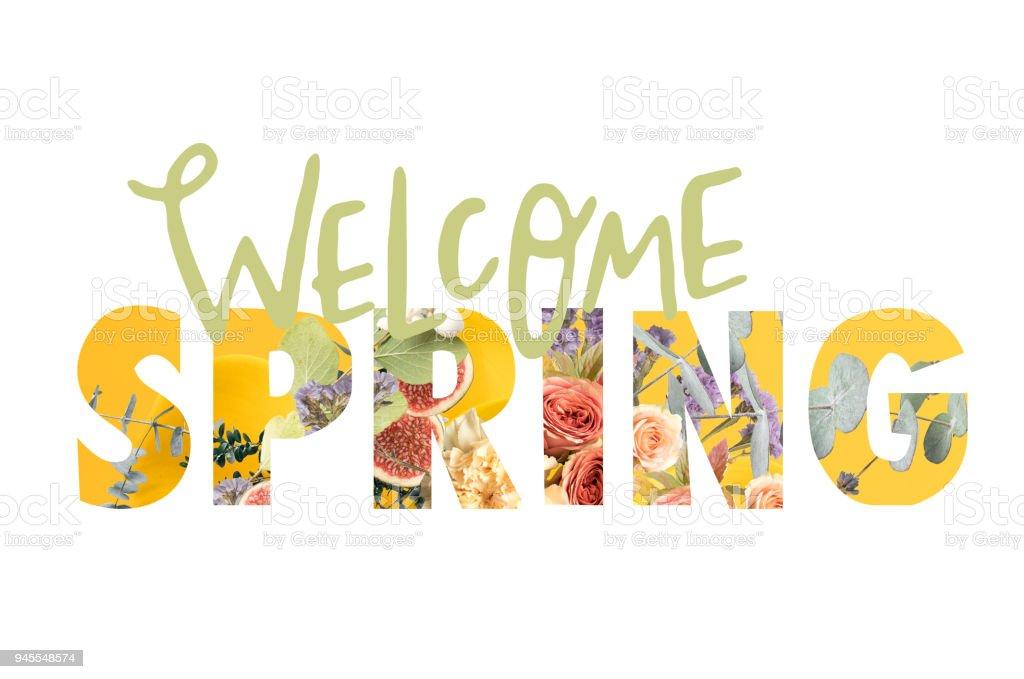 Frühlingserwachen-Zeichen ausgeschnitten Blumenstrauß auf weiß – Foto