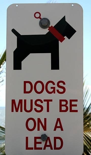 unterschreibe für hunde - wortarten bestimmen übungen stock-fotos und bilder