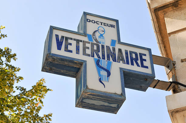 Sign for Veterinary Doctor, France stock photo