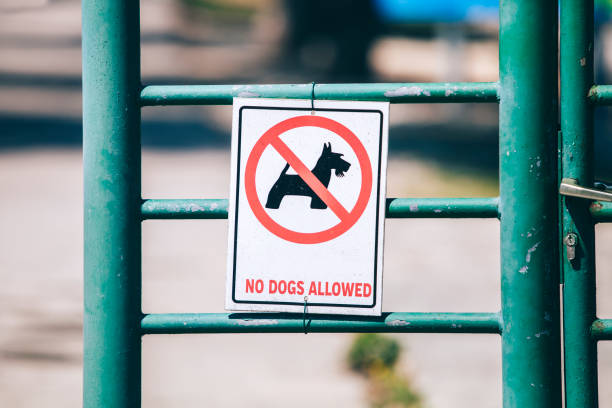 """""""no dogs allowed"""" sign, hung on an iron green fence - lepro stock pictures, royalty-free photos & images"""