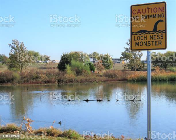 Sign no swimming humorous picture id1186932410?b=1&k=6&m=1186932410&s=612x612&h=y5saisdnbta840y8t7xz 2jqczifcufr poxb3u9ayy=