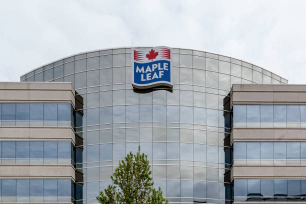 Sign of Maple Leaf on the building in Mississauga. stock photo