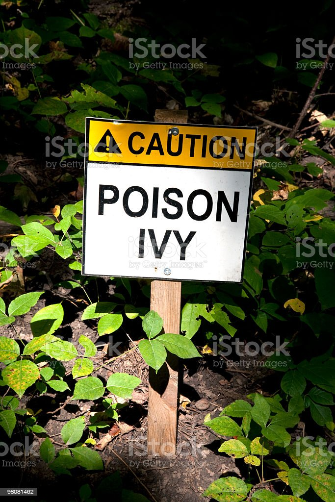 Sign poison Ivy royalty-free stock photo
