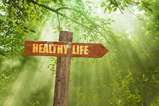 Sign with Healthy Life Text on Green Forest. ストックフォト