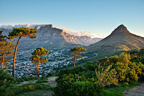 signal hill, cape town, south africa - table mountain south africa stock pictures, royalty-free photos & images
