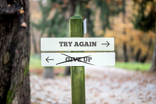 istock Signboard with two signs saying Try again - Give up 529784783