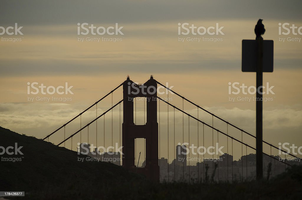 Signpost, Bird and Golden Gate Silhouettes royalty-free stock photo
