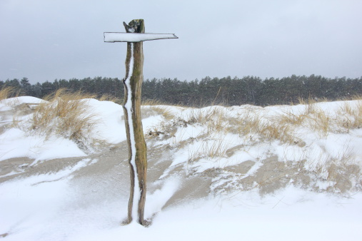 Signpost in the snow storm