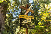 Directions of big trees pointed by a sign in Redwood National Park, California, USA.