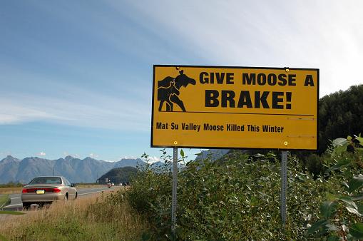 Signpost warnig for moose in Alaska