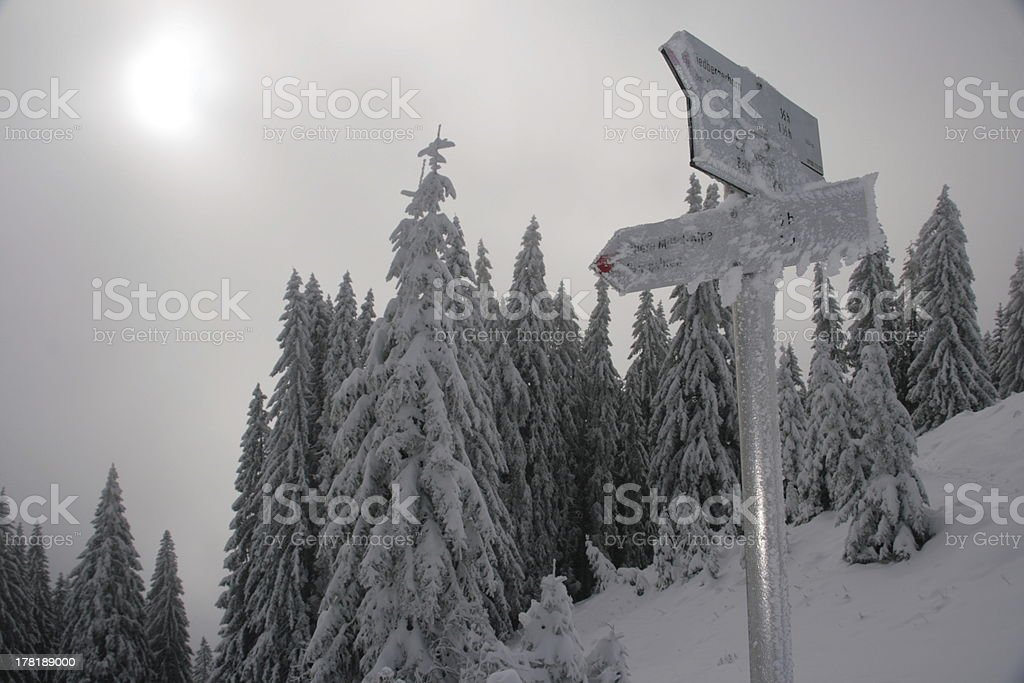 signs in winter stock photo