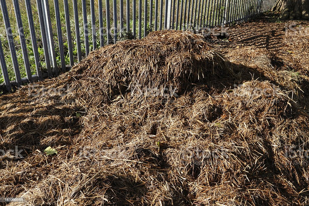 Silage heap with grass and ferns royalty-free stock photo