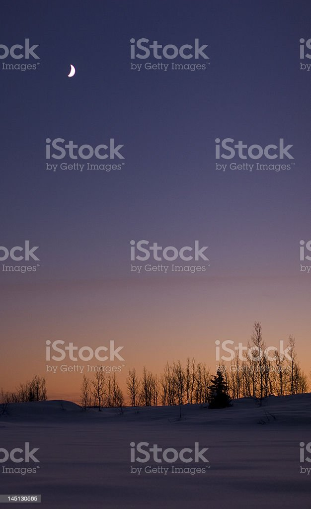 Silence of the Night royalty-free stock photo