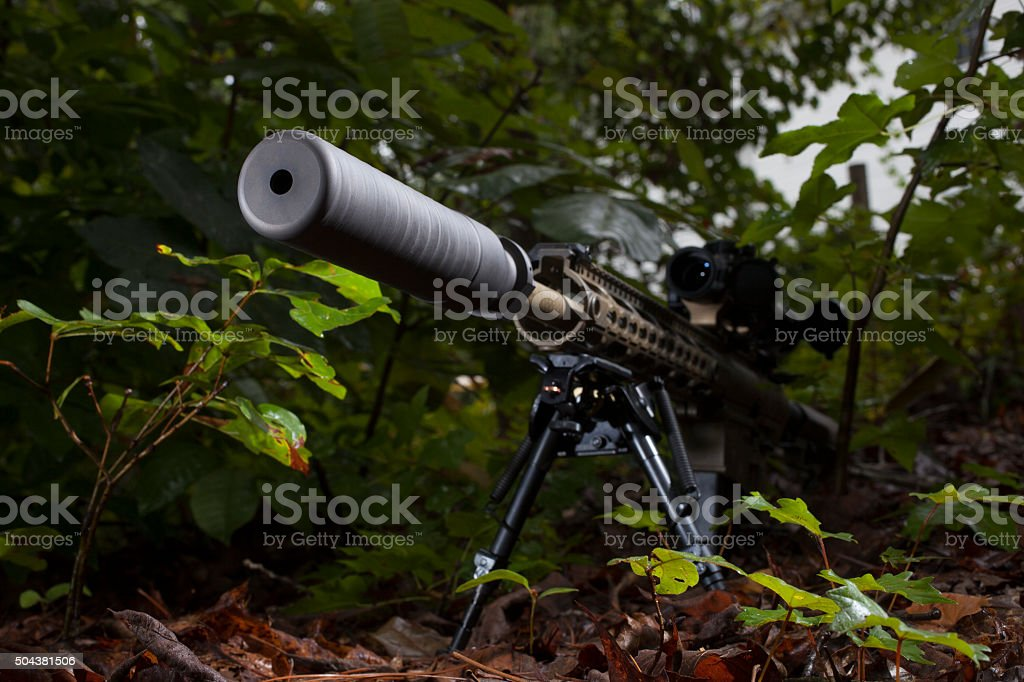 Silencer in the trees stock photo