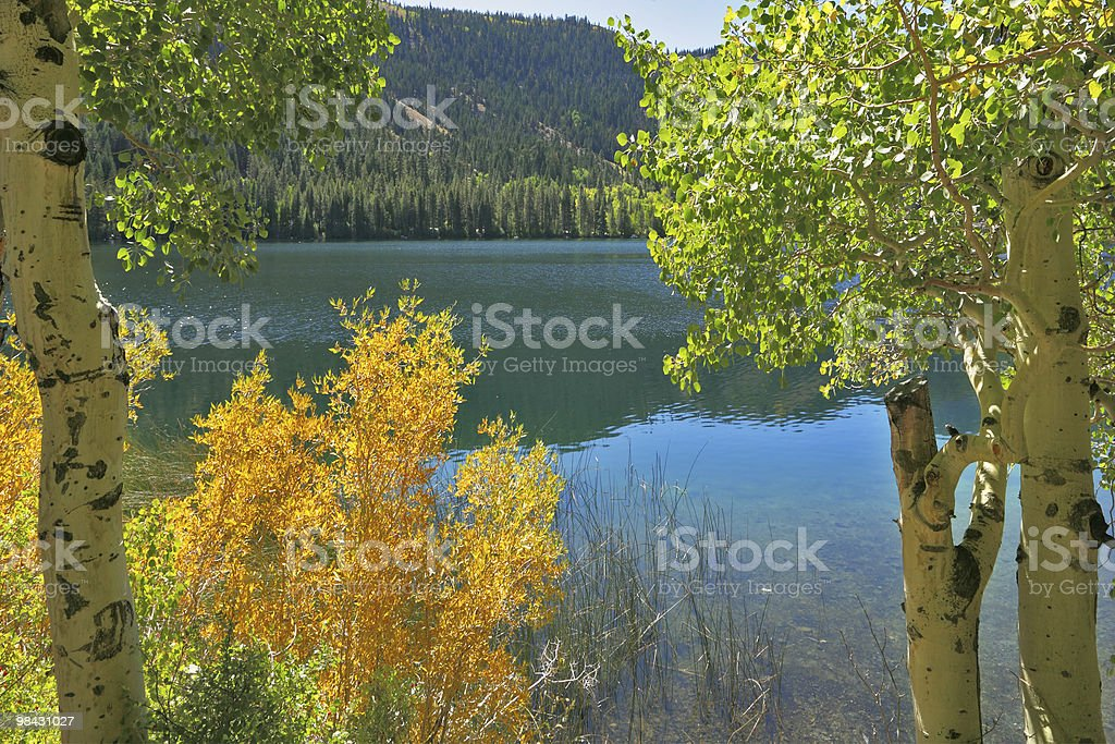 Silent Gulllake. Travel across the USA royalty-free stock photo
