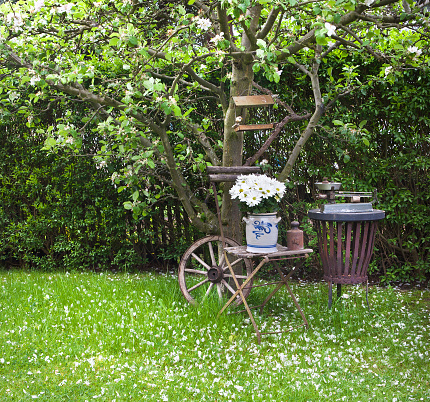 silent under apple tree