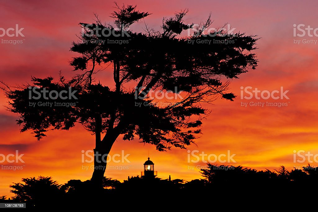 Silhoette of Cypress Tree and Lighthouse at Sunset stock photo