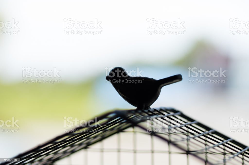 Silhouette bird escaping from the cage. Freedom concept foto de stock royalty-free