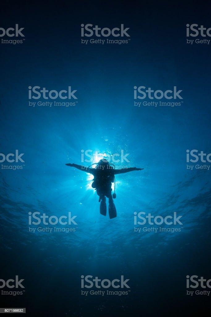 Raios solares mergulhador silhueta atrás no fundo azul debaixo d'água no mar, Tailândia - foto de acervo