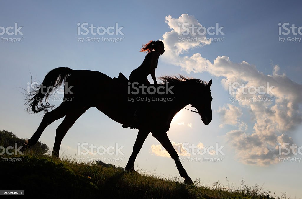 Silhouette equestrian rider with horse after sunset stock photo