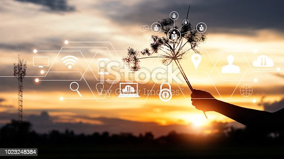 istock Silhouette hand and plant of branch symbol with icon network connection communication, customer, on sunset background. Technology and telecommunication concept. 1023248384