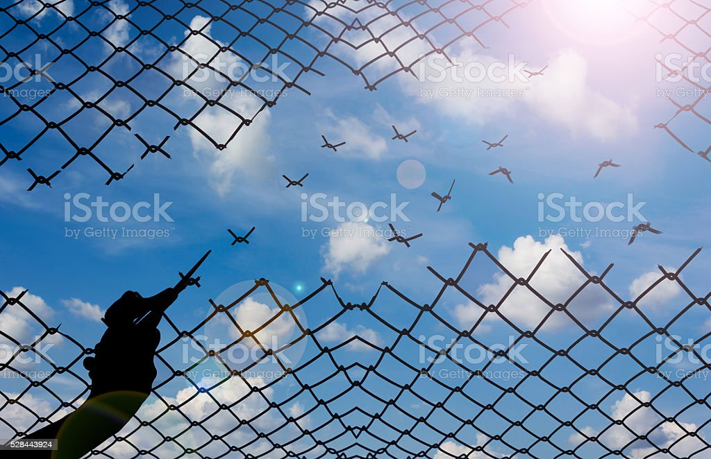 Silhouette hand with scissors cutting net with sky background stock photo