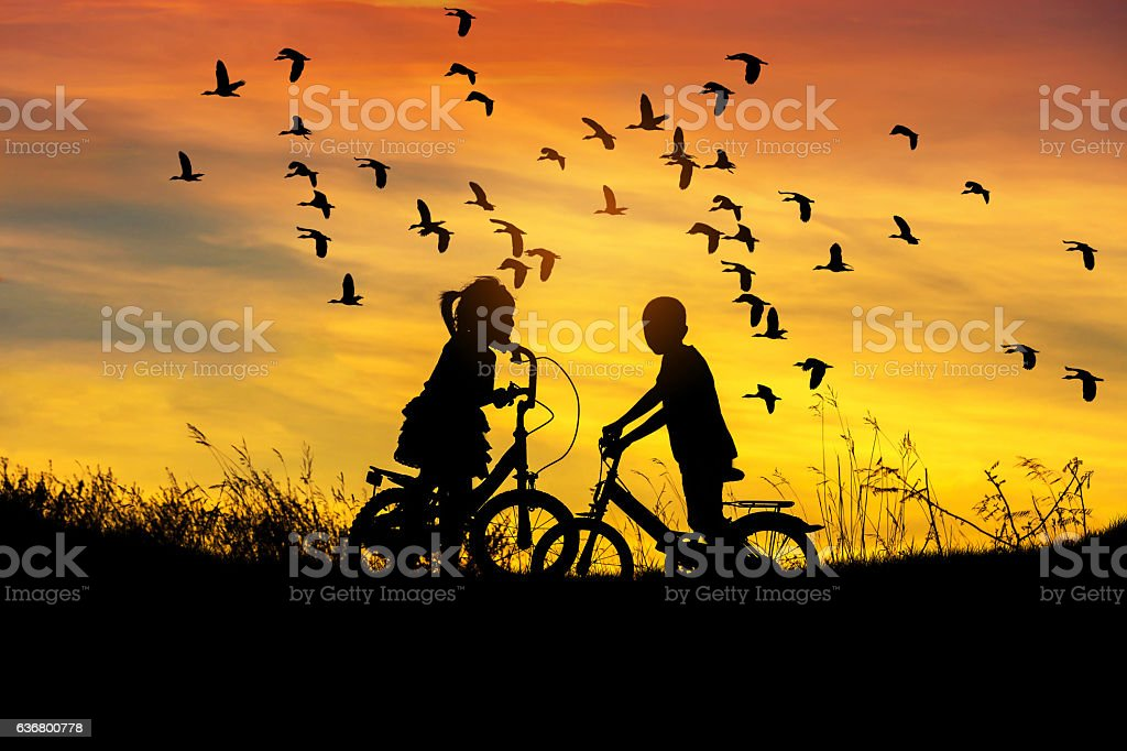 silhouette little boy and little girl look to flock waterbird flying stock photo
