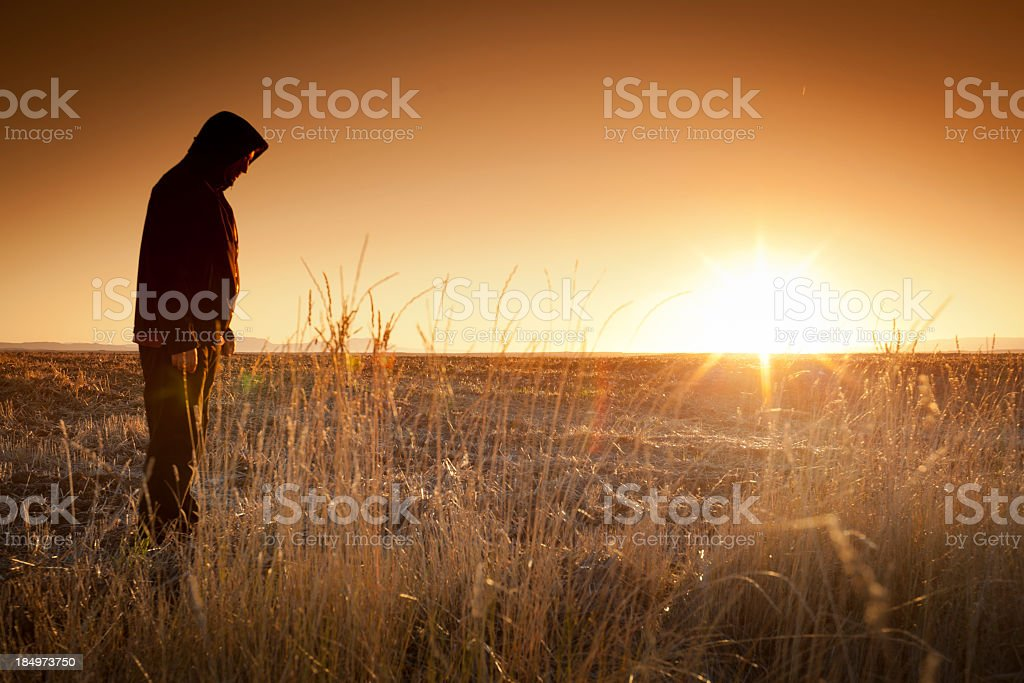 Silhouette man  and field stock photo