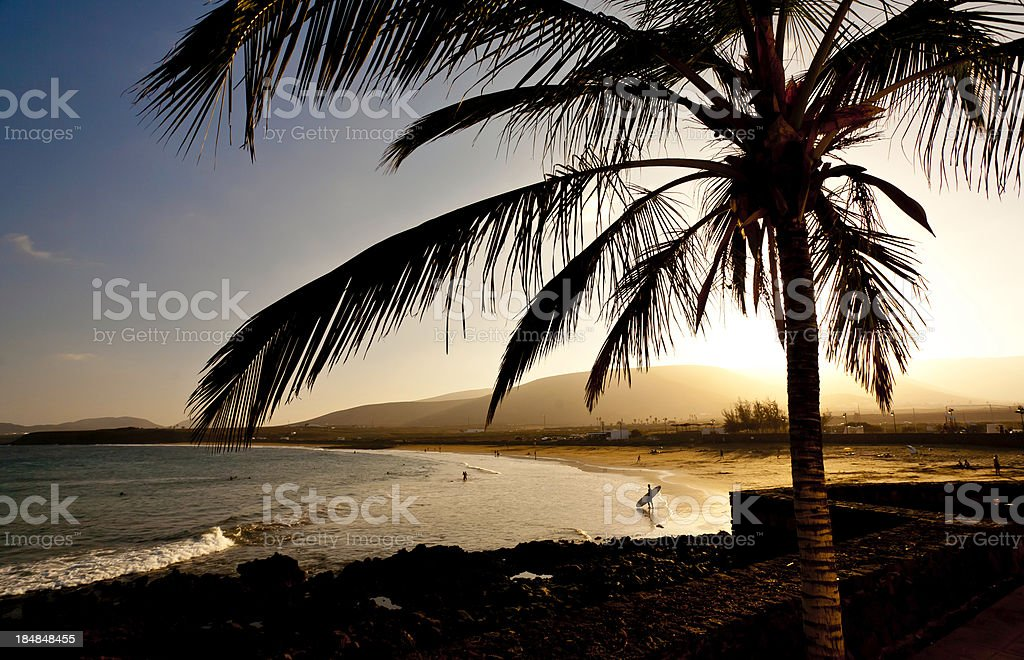 silhouette of a beach stock photo