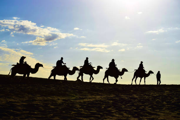 Silhouette of  A Camel Caravan in the Desert Landscape. Silhouette of a camel caravan in the desert, beautiful morning sky as background. Created in Dunhuang, China, 07/07/2018 silk road stock pictures, royalty-free photos & images