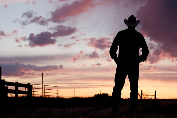 Silhouette of a cowboy at day break Cowboy watching sunset. rancher stock pictures, royalty-free photos & images