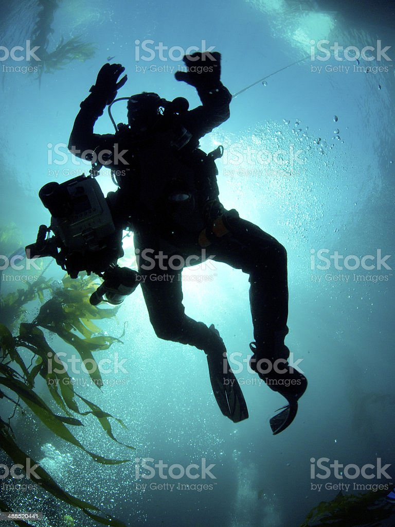 Silhouette of a Diver Descending stock photo