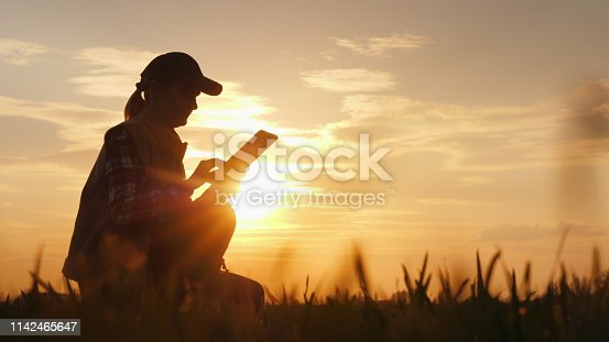 Young woman farmer studying the seedlings of a plant in a field, using a tablet.