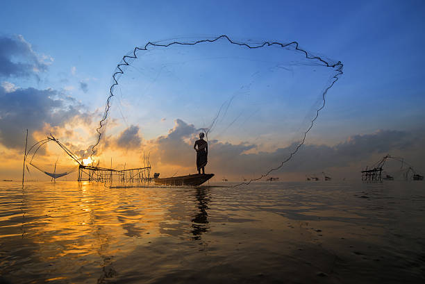 Silhouette of a fisherman throwing his net with beautiful sky Asian fisherman on wooden boat casting a net for catching freshwater fish in nature river in the early morning before sunrise at Pak Pra, Phatthalung, Thailand. netting stock pictures, royalty-free photos & images