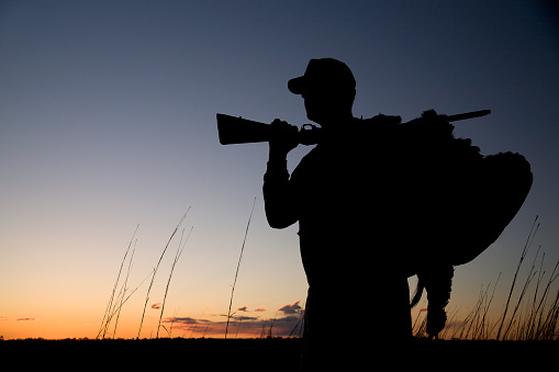 Silhouette of a hunter at sunset