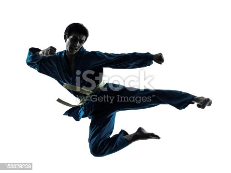 one asian man exercising karate vietvodao martial arts in silhouette studio on white background