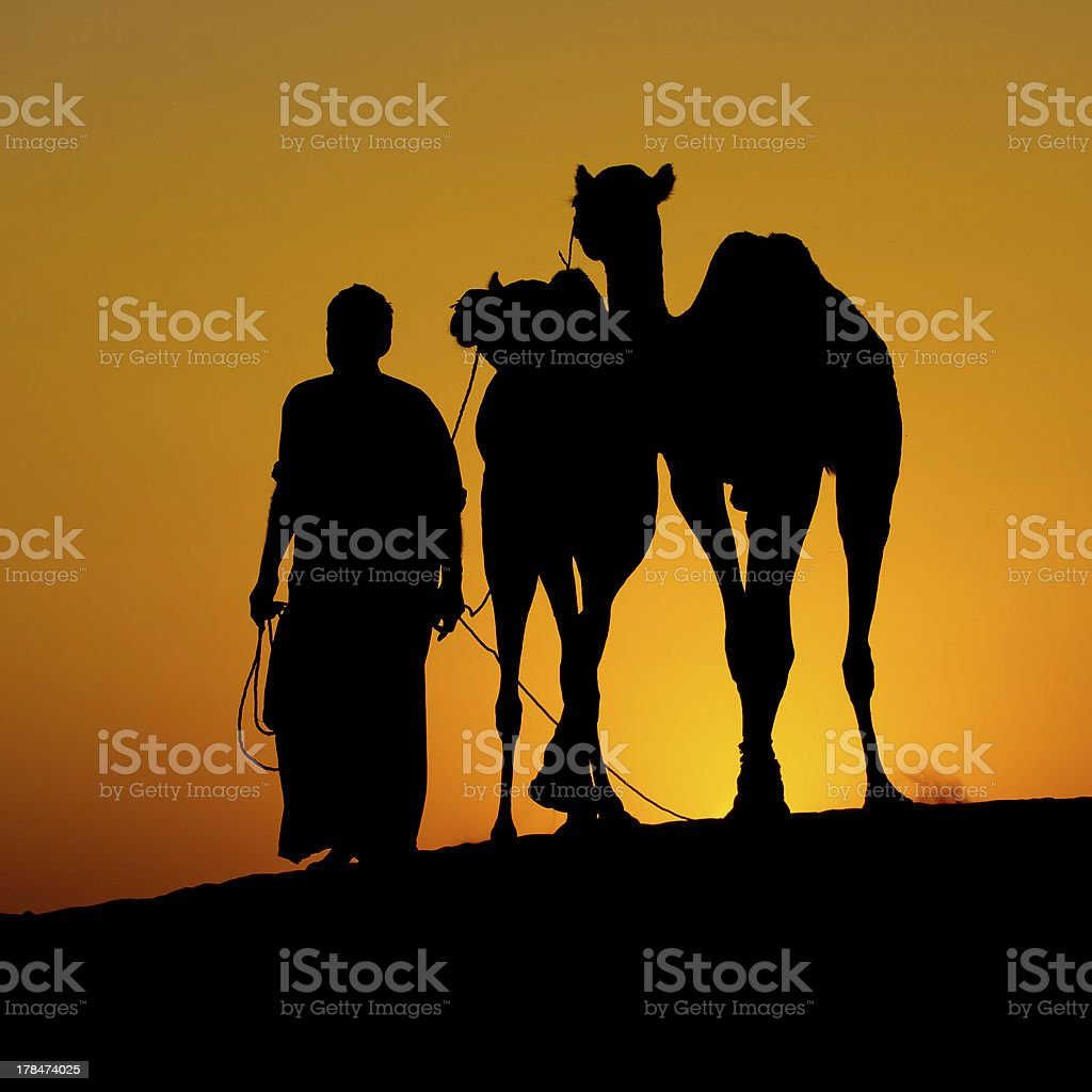 Silhouette of a man and two camels at sunset, India royalty-free stock photo