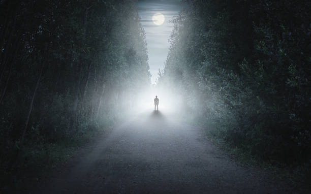 어둡고 안개낀 숲속의 남자의 실루엣 - 섬뜩한 뉴스 사진 이미지