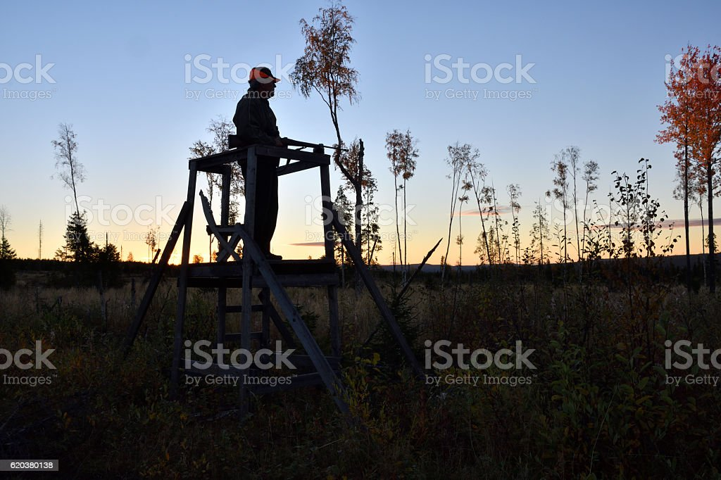 Silhouette of a Moose hunter standing in a hunting tower foto de stock royalty-free