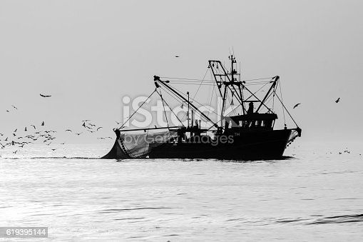 Shrimp Cutter photographed in the backlight of the late sun so that creates a beautiful silhouette, the image is converted to black and white.