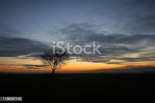 1034754000 istock photo Silhouette of a solitary tree against the evening twilight sky during blue hour 1158267140
