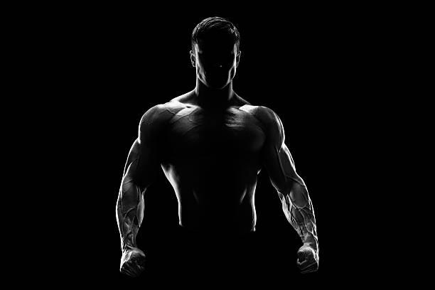 silueta de un combate fuerte - macho fotografías e imágenes de stock